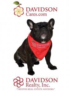 Davidson Cares