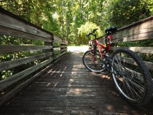 Gainesville ourdoor park - bike